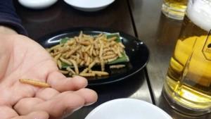 昆虫食 やはりドングリ虫は食べられる!しかも、おいしいらしい・・・